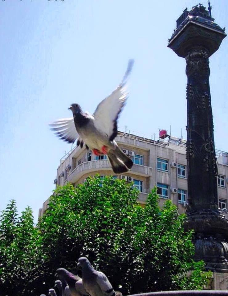 Damaskus-116